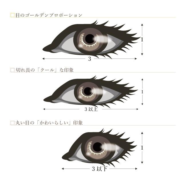 目のゴールデンプロポーション