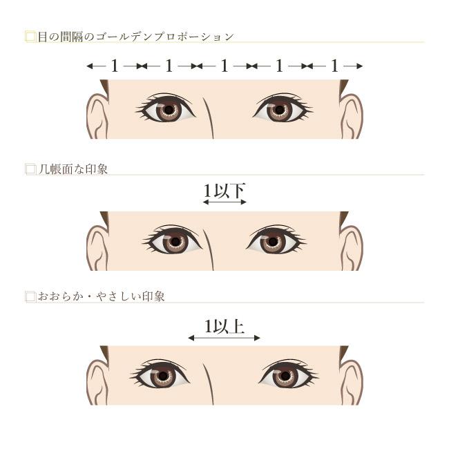 目のゴールデンプロポーション2